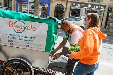 biocycle-3.jpg