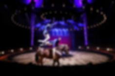 Cirquegruss-1.jpg