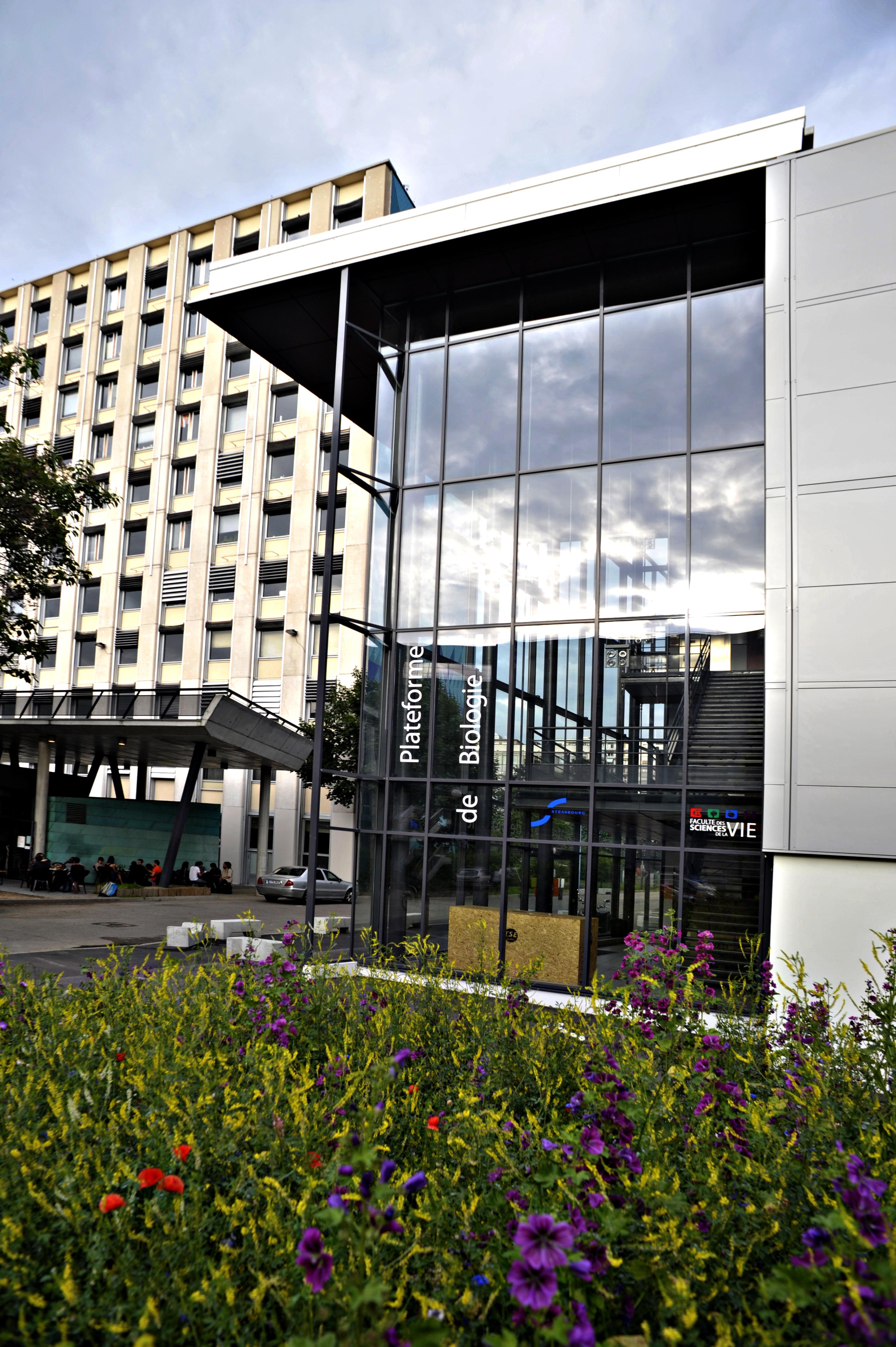 Strasbourg Faculté des Sciences de la vi