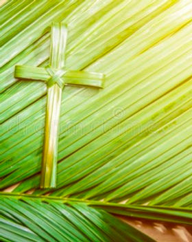 holy week images palm.jpg