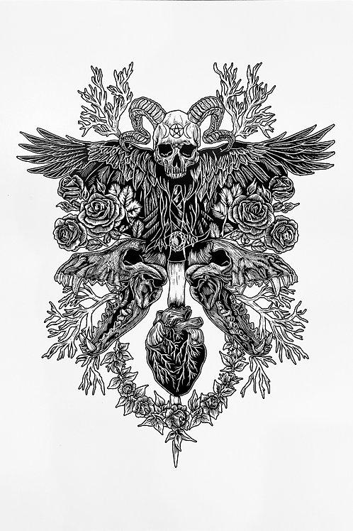 Marissa Suto - Print