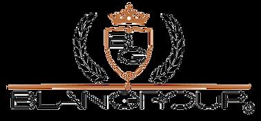 Blangroup holding empresarial _Logo Regist