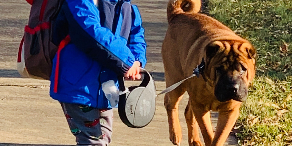 Dog Walkers Watch
