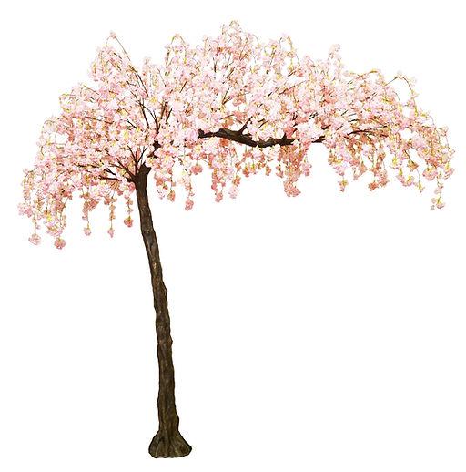 peachy pink blossom tree_edited.jpg