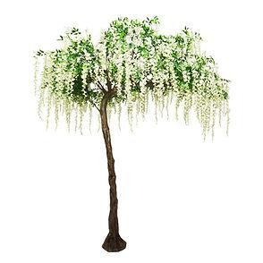Wisteria canopy tree hire