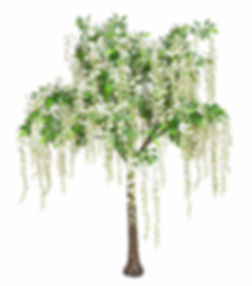 Wisteria wedding Tree Hire West Yokshire