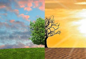 climate-change-2063240_edited.jpg