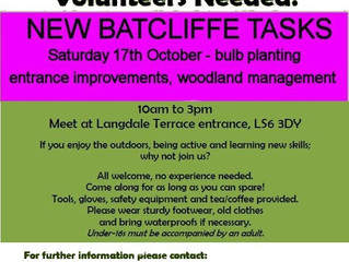 BATCLIFFE WOOD TASK - book your place