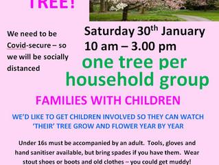 Help us plant cherry trees