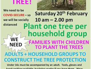 HELP US PLANT TREES