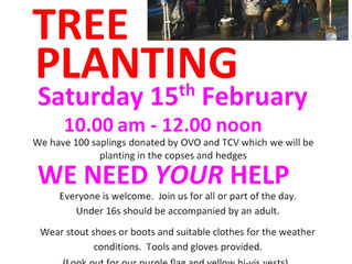 Beckett Park community task - tree planting