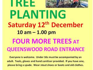 More Beckett Park Tree Planting