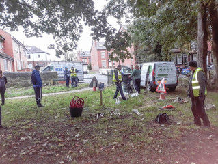 Thanks to Batcliffe Wood volunteers