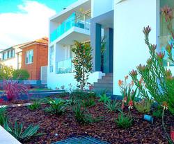 Cabarita front entry gardens