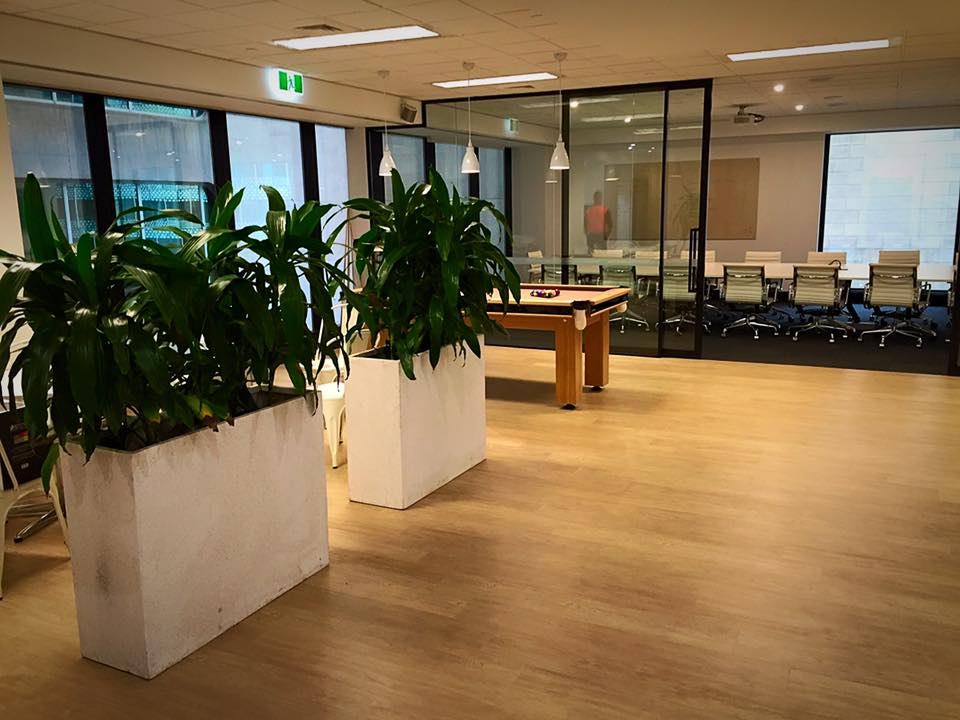 indoor planter boxes for city office