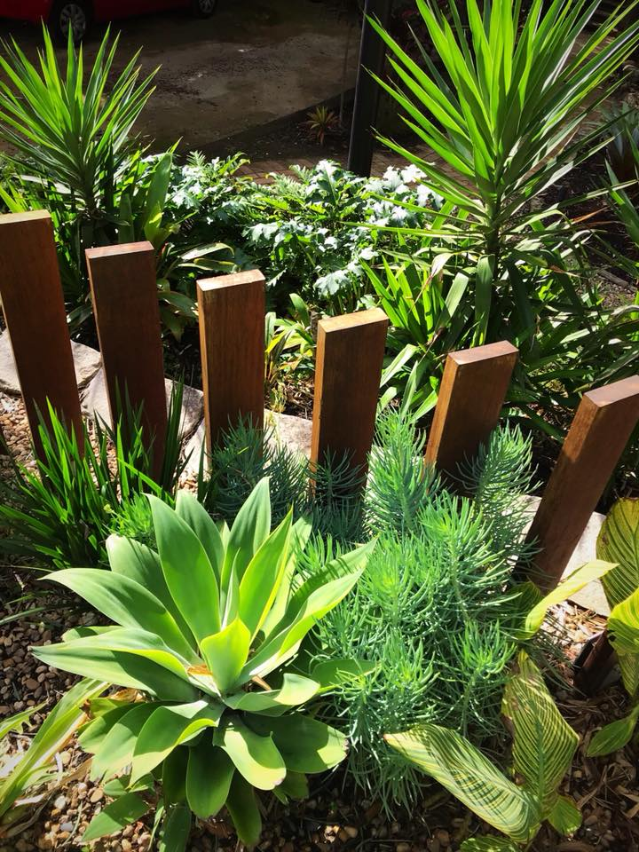 pymble front fence