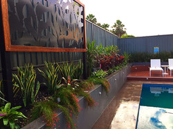 Screen and plantings