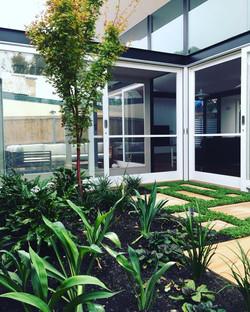 dulwich hill atrium garden