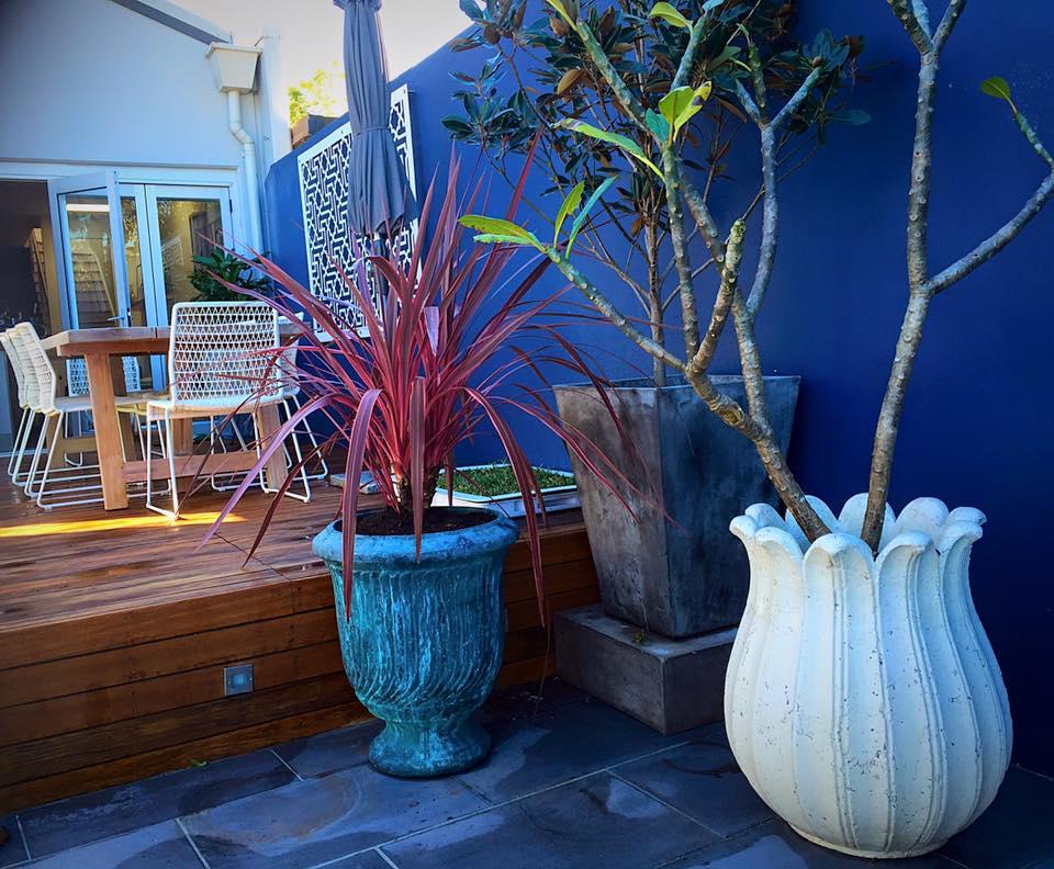 newtown courtyard garden