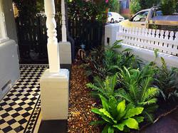 petersham tiles and plantings