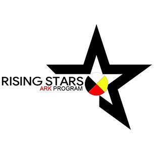 RSF Ark Progrom Logo - DARK.jpeg