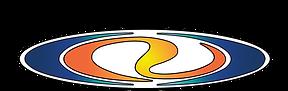 TSR logo BASIC-01.png