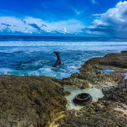 Visit the Saragossa Shipwreck