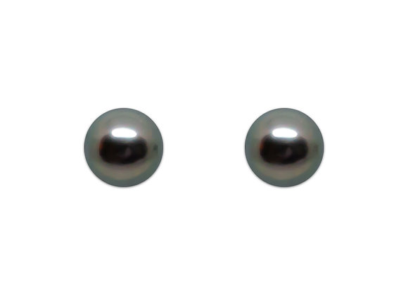 E26 Studs Black Pearl Earrings