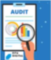 logo_audit.png