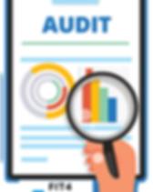 logo_audit3.png