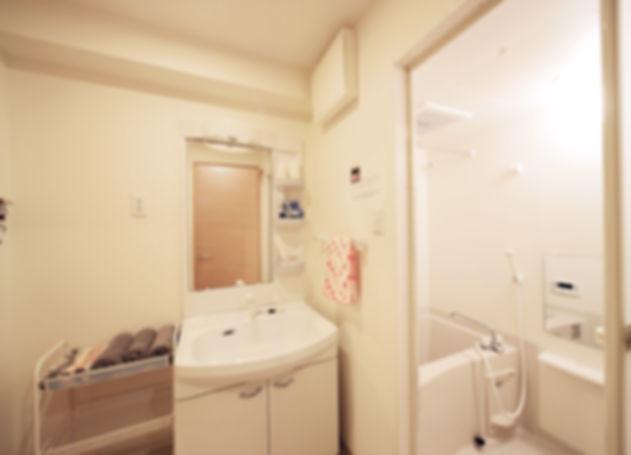 OTR Park RM304 bathroom-1.jpg