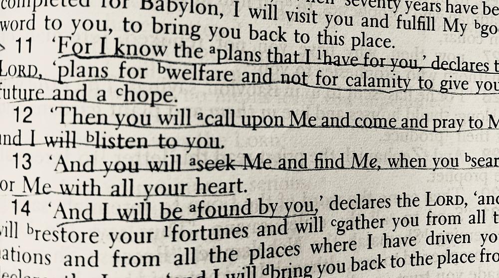 Jeremiah 29:11 (NASB)