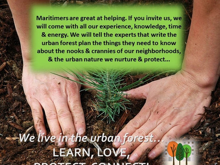 If You Invite Us, We Will Come – Real Citizen Engagement in Urban Forest Planning is a Must!