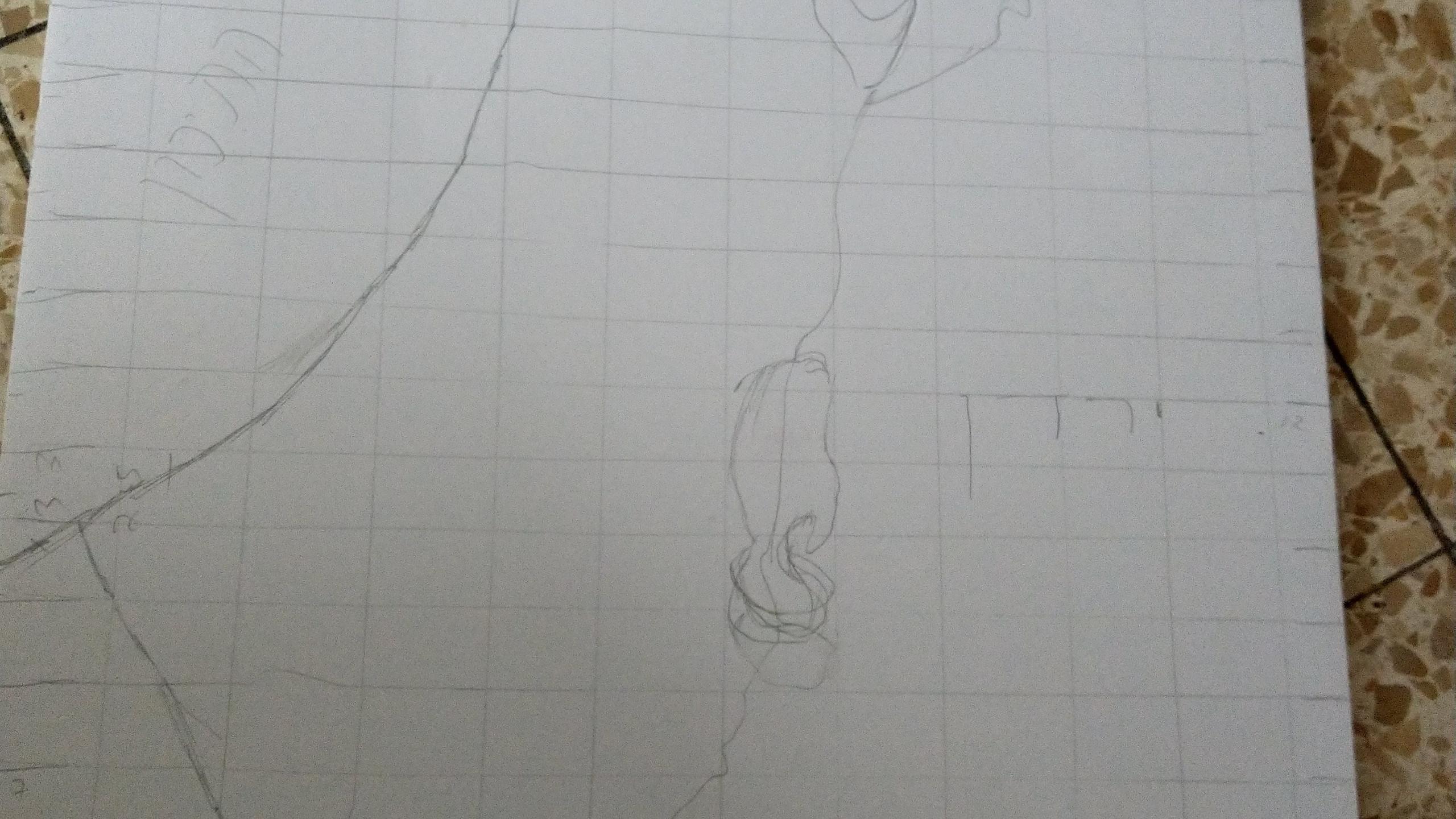 המפה המשורטטת בקנה מידה