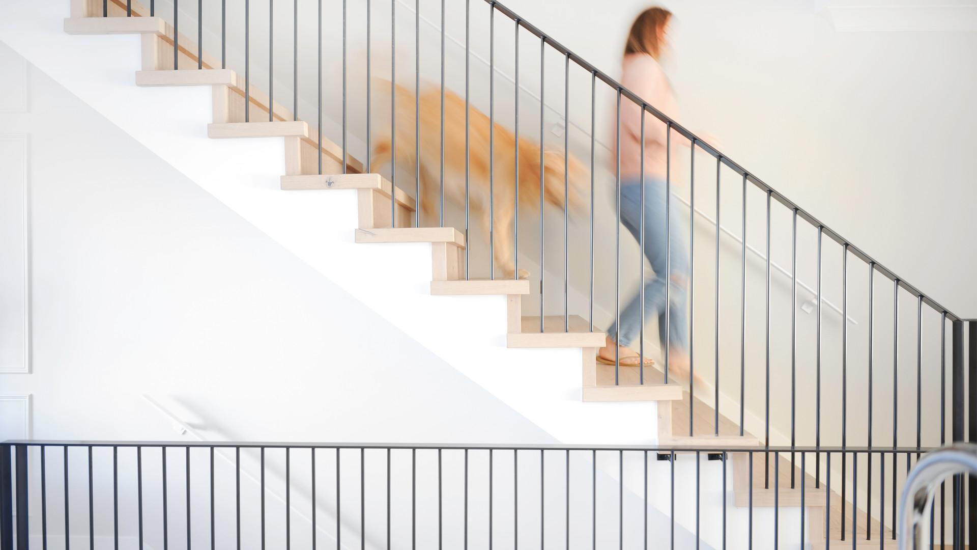 Stairs Blurred With Dug.jpg