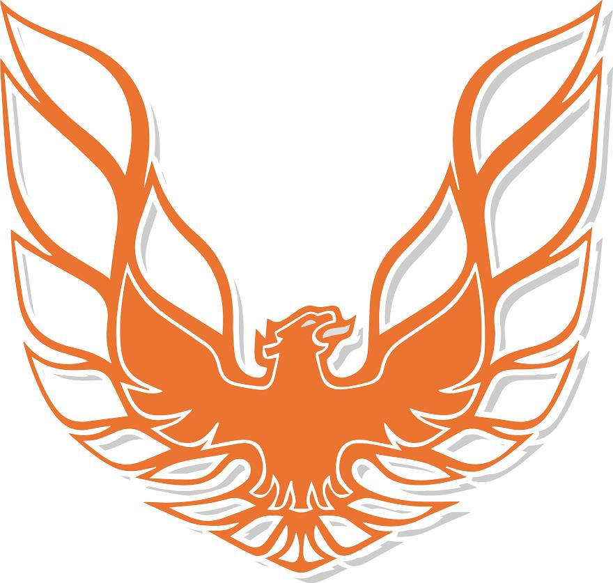 falcon services ,mandurah