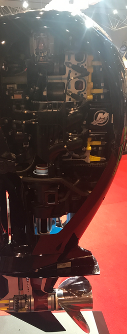 Whats inside your outboard Mercury