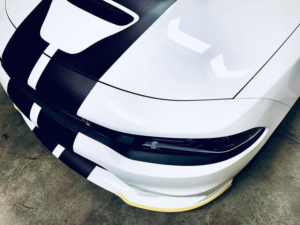 White SCAT.jpg