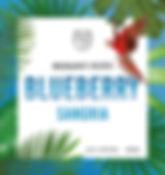 Blueberry%20Bottle%20Label_edited.jpg