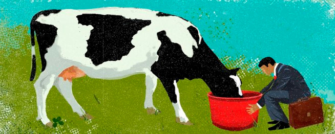 La apuesta por la I+D, clave para el sector lácteo ante el final de la cuota