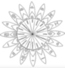 Power_Flower_Privilegienblume.png