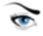 Permanent Make Up Augenbrauen Behandlung und Ausbildung bei Beauty Liner Berlin