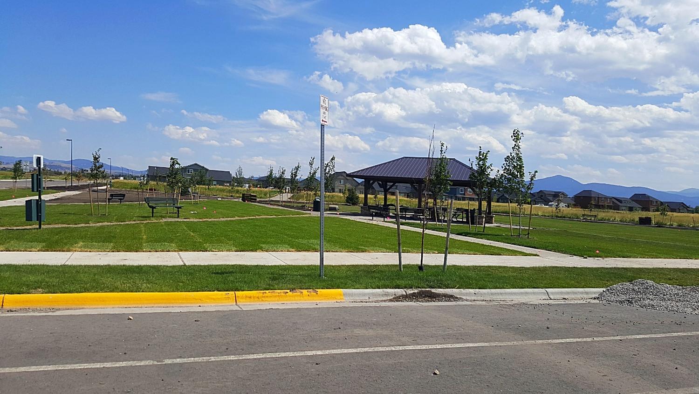 Parks 1_edited.jpg