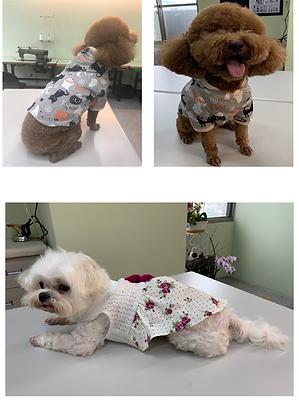 寵物服裝-1.png