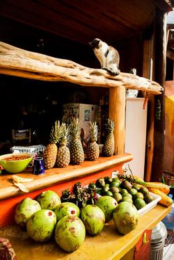 Pineapples & Munchkin