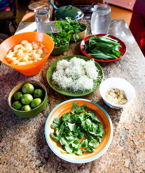 Herbs & Lime