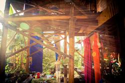 The Jungle Lodge