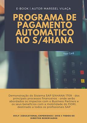 ebook - programa de pagamento.png