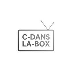 logo-c-dans-la-box-web-serie