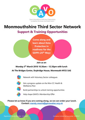 Monmouthshire Third Sector Network